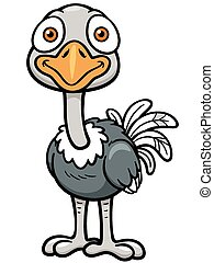 Ostrich - Vector illustration of Cartoon ostrich