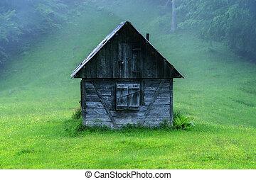 sunrice - alone cabin in the woods