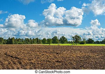 Plowed field - Edge of plowed field at countryside. Estonia,...