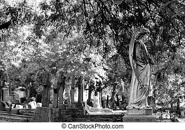 tombstones and statutes - black and white of tombstones and...