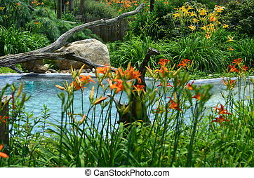 Water landscape - A water landscape with flowers and shrubs