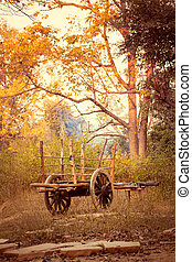 Old bullock cart in the countryside - Beautiful view of old...