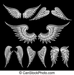 White wings on black background - Set of sketch white wings...