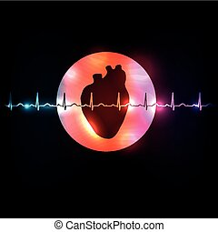 Healthy heart in the round shape and normal heart beat rhythm