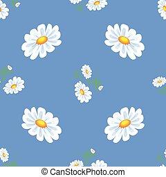 White daisies.