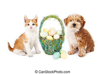Easter Puppy Dog and Kitten - A cute kitten and puppy dog...