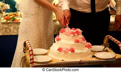 Cutting wedding cake bride and groom