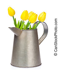 Yellow tulips in watering can