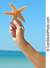Starfish - Womans Hand Holding a Starfish