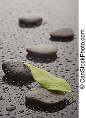 Stones with leaf and water drops