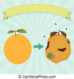 Rotten orange with flies and new orange. Blank ribbon for...