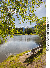 Bench at quiet lake - Bench at the Muehlwald lake, Campo...