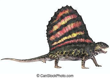 Dimetrodon Permian Reptile - Dimetrodon was a carnivorous...