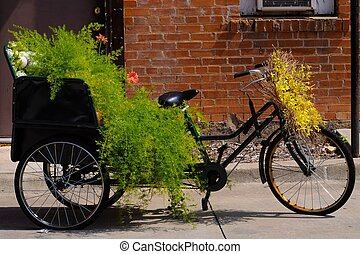Nature Bike - Lovely nature bike in front of red brick wall