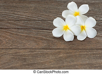 frangipani flower on wood
