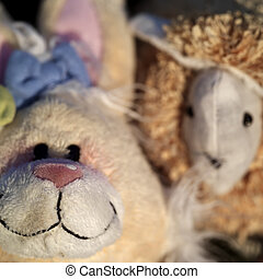 Soft Toys - Closeup of two children soft toys, natural light...