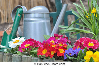 flower bed - wooden border with colorful pansies and...
