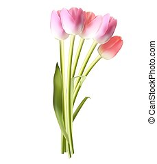 Beautiful Pink Realistic Tulip Vector Illustration EPS10