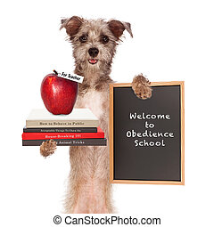 Dog Obedience School Teacher - Funny image of dog holding...