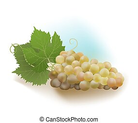 white grapes and leaves