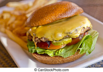 Cheeseburger and Fries - Cheeseburger on a whole wheat bun...