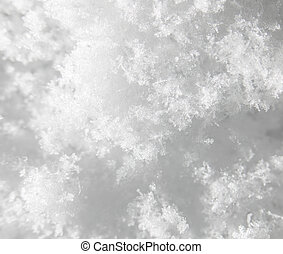 snow as a background. close-up