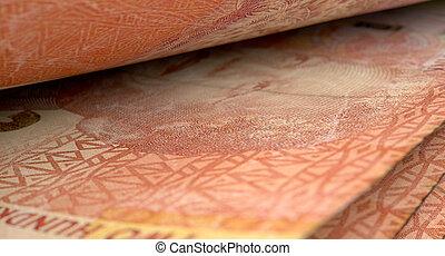 séparé, billets banque, gros plan,  détail