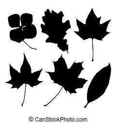 set of black leaves silhouettes