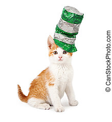 Cat Wearing Sequin St Patricks Day Hat