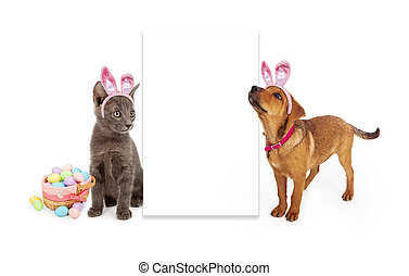 Easter Kitten and Puppy Blank Sign - A young kitten and...