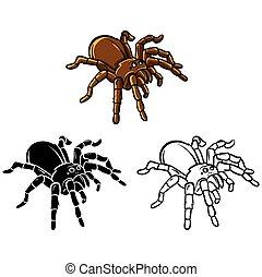 Coloring book Tarantula character - Coloring book Tarantula...