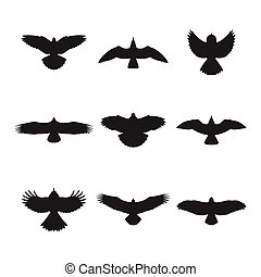 Flying bird silhouettes set - Flying bird like eagle sparrow...