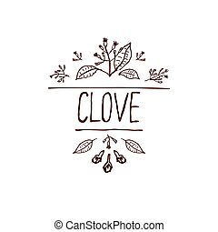 Herbs and Spices Collection - Clove. Handdrawn Vignette....