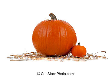 Assorted sizes of pumpkins on hay on white