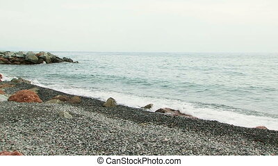 Sea Waves Gently Washing Shore - Tranquil scene of the Black...
