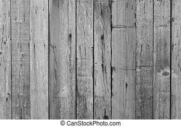 weathered wood panel - Weathered, greying wood panel in...