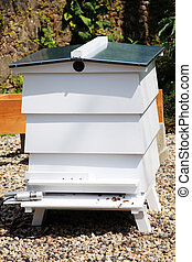Bee Hive - Orchard beehive used for the commercial...