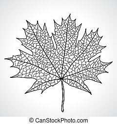 Leaf of a maple, nature symbol monochrome vector