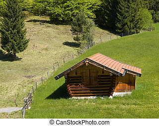 bavarian house on a meadow - bavarian house for animal feed...