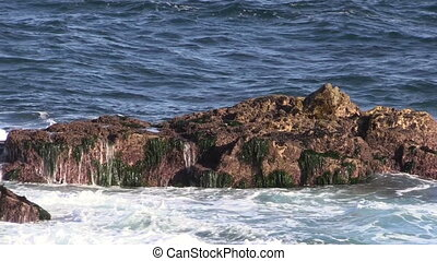 California Coastal Landscape