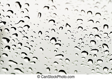 dew drop background - black and white dew drop background