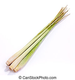 Lemon Grass - Bunch of lemon grass isolated against white...