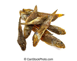 Eight dried sea fishes isolated on a white background