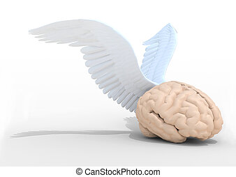 human brain with wings, 3d illustration
