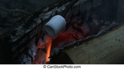 Roasting marshmallows on fire with a wooden stick during...
