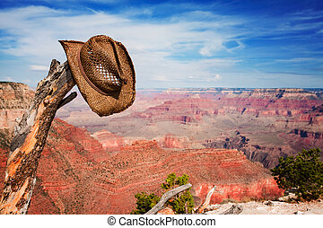 Hat hung on a branch near the Grand Canyon - Cowboy hat hung...