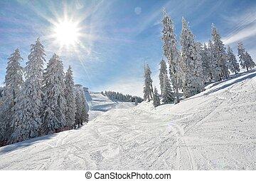 esqui, declive, e, neve, coberto, árvores,