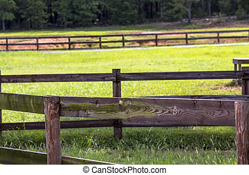 Horse Farm - Horse farm with fencing and green pastures