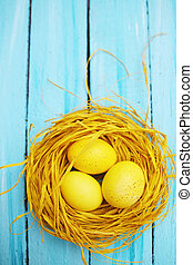 nest with yellow eggs