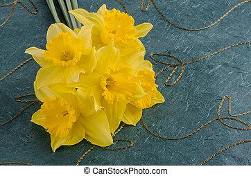 Jonquil flowers - Yellow jonquil flowers on green...